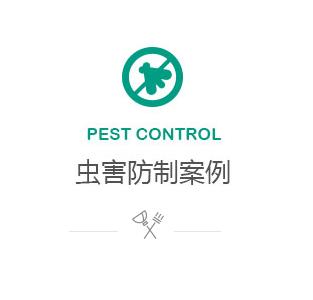 虫害防治案例